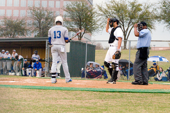 baseball, brookhaven college, bears